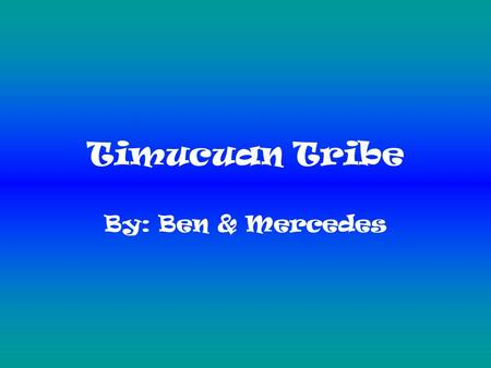 Timucuan Tribe By: Ben & Mercedes. Hunting The Timucuan tribe hunted deer, wild turkey and alligators. They used tools for hunting like spears, clubs,