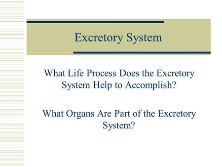 Excretory System What Life Process Does the Excretory System Help to Accomplish? What Organs Are Part of the Excretory System?
