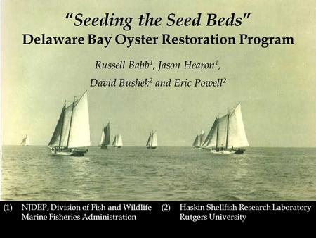 "(2) Haskin Shellfish Research Laboratory Rutgers University "" Seeding the Seed Beds "" Delaware Bay Oyster Restoration Program Russell Babb 1, Jason Hearon."