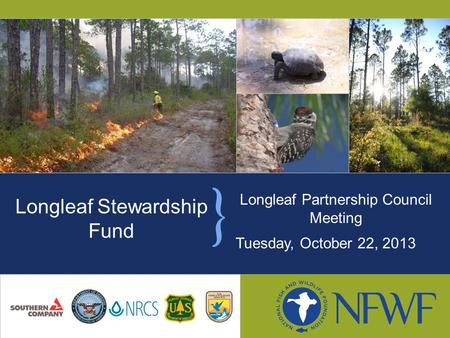 Longleaf Partnership Council Meeting Tuesday, October 22, 2013 Longleaf Stewardship Fund.