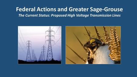 Federal Actions and Greater Sage-Grouse The Current Status: Proposed High Voltage Transmission Lines.