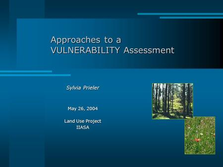 Approaches to a VULNERABILITY Assessment Sylvia Prieler May 26, 2004 Land Use Project IIASA.