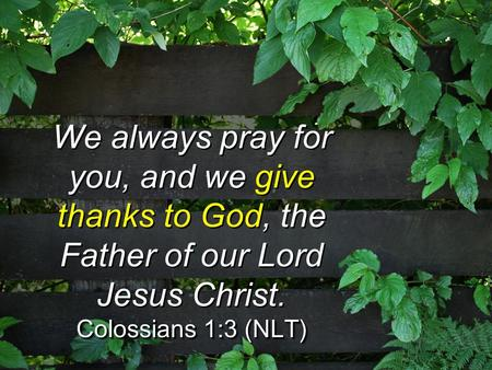 We always pray for you, and we give thanks to God, the Father of our Lord Jesus Christ. Colossians 1:3 (NLT) We always pray for you, and we give thanks.