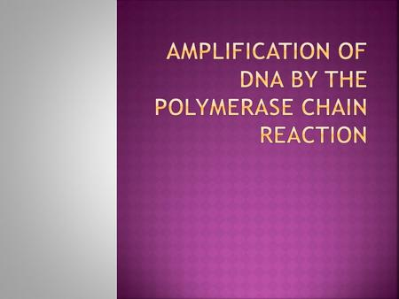 The polymerase chain reaction is a process that allows individual DNA fragments to be propagated in bacteria and isolated in large amounts  The DNA.