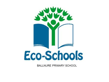 BALLNURE PRIMARY SCHOOL. What is Eco Schools ?
