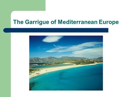 The Garrigue of Mediterranean Europe. Introduction Garrigue is a low soft-leaved scrubland found on limestone soils around the Mediterranean Basin, generally.