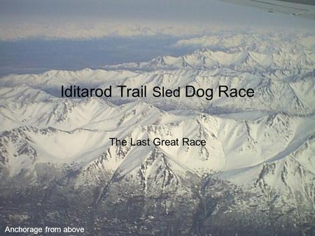 Iditarod Trail Sled Dog Race The Last Great Race Anchorage from above.