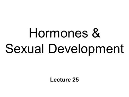 Hormones & Sexual Development Lecture 25. Sex, & Gender n Sex l biological differences l male & female l intersex n Gender l self-identity about sex role.