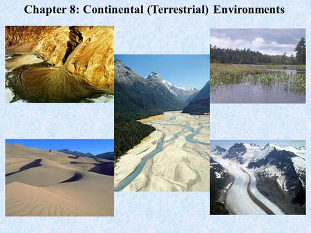 Chapter 8: Continental (Terrestrial) Environments.