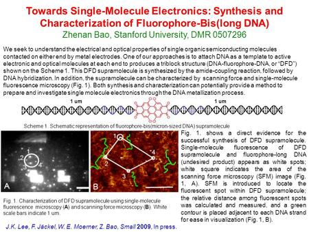 1 um We seek to understand the electrical and optical properties of single organic semiconducting molecules contacted on either end by metal electrodes.