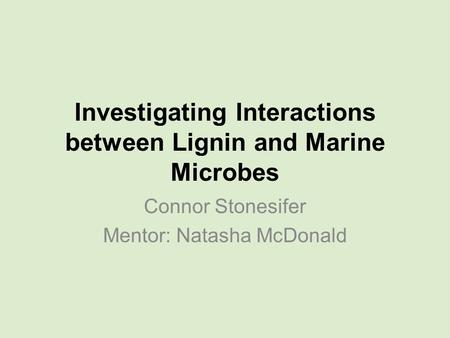Investigating Interactions between Lignin and Marine Microbes Connor Stonesifer Mentor: Natasha McDonald.