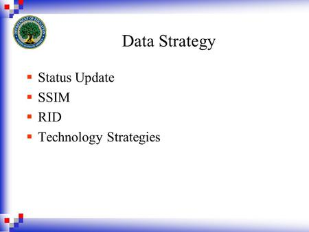 Data Strategy  Status Update  SSIM  RID  Technology Strategies.