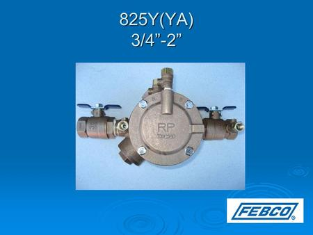 "825Y(YA) 3/4""-2"". Modification Overview  Production of the 825Y began in 1978 and is current.  The 825YR (1994-2006) had replaceable check seats. **"