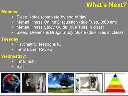 What's Next? Monday: Sleep Notes (complete by end of day) Mental Illness Online Discussion (due Tues. 8:00 am) Mental Illness Study Guide (due Tues in.