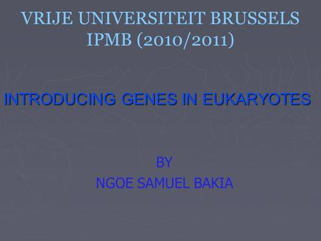 VRIJE UNIVERSITEIT BRUSSELS IPMB (2010/2011) INTRODUCING GENES IN EUKARYOTES BY NGOE SAMUEL BAKIA.