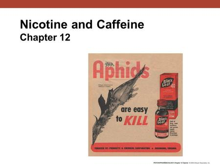 Nicotine and Caffeine Chapter 12. Leaves of the Nicotiana tabacum plant Nicotine History.