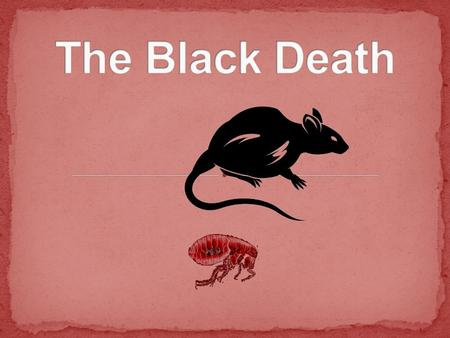 "Guiding Question  What is the ""Black Death""?  What caused the Black Death?  What were the consequences?"