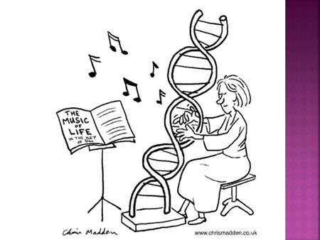 Molecular Biology of the Gene  1952—Hershey & Chase determine that DNA rather than protein carries genetic information  1953—Rosalind Franklin captures.