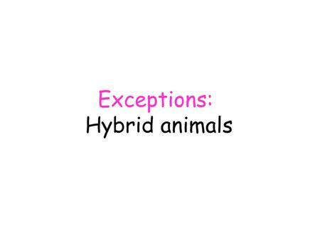 Exceptions: Hybrid animals. Exceptions: Hybrid animals Although breeding barriers (5) normally prevent different species from interbreeding with each.