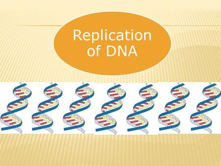 Replication of DNA.  The process of making a copy of DNA is called DNA REPLICATION.  Why does DNA need to be copied???  DNA contains all the information.