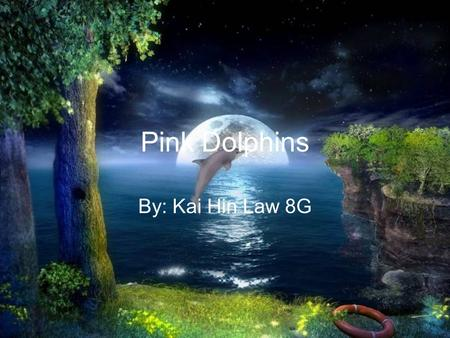 Pink Dolphins By: Kai Hin Law 8G. What is happening to them? People are polluting the sea causing the pink dolphins to lose there habitat Fishermen's.
