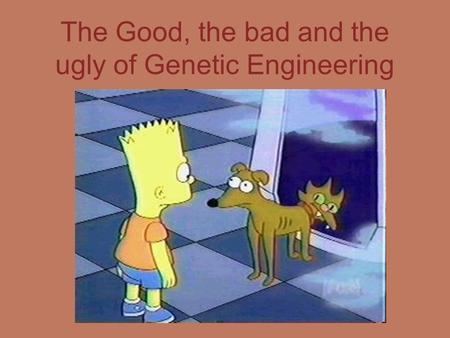 genetic engineering good or bad essay Essay the pros and cons of genetic engineering - the pros and cons of genetic engineering the pros and cons of genetic engineering essay.