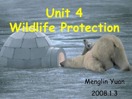 Unit 4 Wildlife Protection Menglin Yuan 2008.1.3.