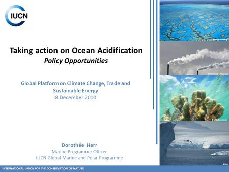 Taking action on Ocean Acidification Policy Opportunities INTERNATIONAL UNION FOR THE CONSERVATION OF NATURE ©IUCN/Tamelander ©Herr ©Hoegh-Guldberg ©freefotouk.