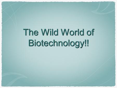 The Wild World of Biotechnology!!. Applications Genetic Transformation Cloning - Genes and entire organisms Gene Therapy Environmental Clean-Up.