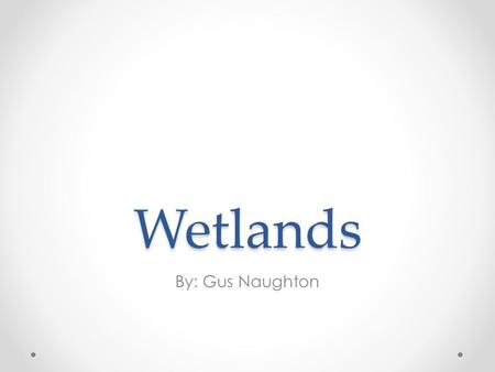 Wetlands By: Gus Naughton. What are wetlands? A wetland is an area of land whose soil is saturated with moisture either permanently or seasonally. Such.