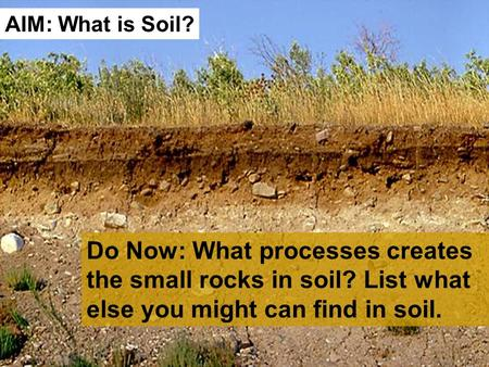 Do Now: What processes creates the small rocks in soil? List what else you might can find in soil. AIM: What is Soil?