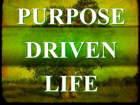 "PURPOSE DRIVEN LIFE. ""Planned for God's Pleasure"" #1 WORSHIP."