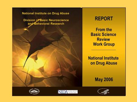 REPORT From the Basic Science Review Work Group National Institute on Drug Abuse May 2006 National Institute on Drug Abuse Division of Basic Neuroscience.