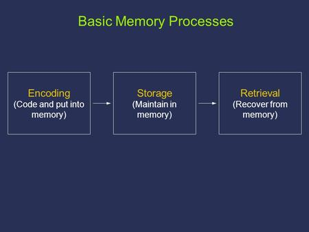 Storage (Maintain in memory) Retrieval (Recover from memory) Encoding (Code and put into memory) Basic Memory Processes.
