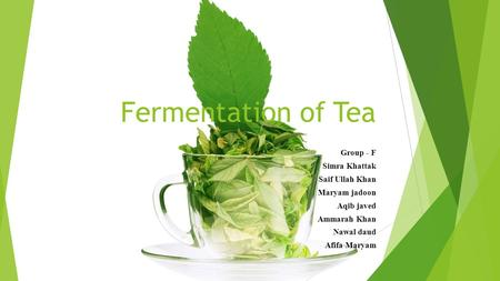Fermentation of Tea Group - F Simra Khattak Saif Ullah Khan