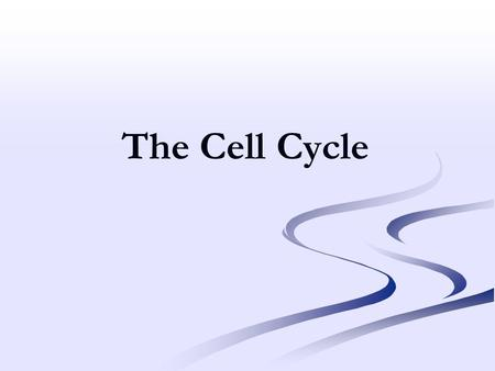 The Cell Cycle. CELL SIZE IS LIMITED ● Too great an increase in size could result in surface area too small for exchange of gases, nutrients and wastes.