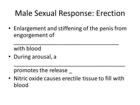 Male Sexual Response: Erection Enlargement and stiffening of the penis from engorgement of __________________________________ with blood During arousal,
