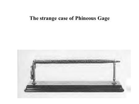 The strange case of Phineous Gage