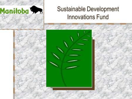 Sustainable Development Innovations Fund. Fund Overview Created in October 1989 Provides financial assistance for development, implementation and promotion.