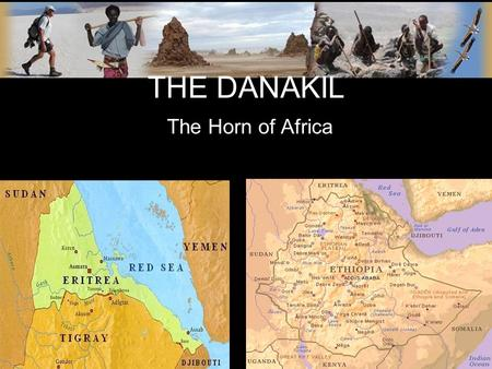THE DANAKIL The Horn of Africa. WHO ARE THE DANAKIL? Cushite ethnic group residing in the Danakil Desert they prefer to be known as the Afar which means.