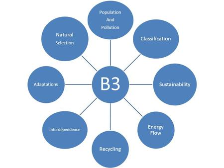 Sustainability Energy Flow Recycling Natural Population Adaptations