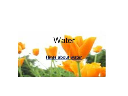 Hints about water Water. Tutor: Adil Al Bedri Hints about water.