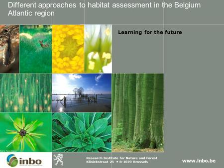 Www.inbo.be Research Institute for Nature and Forest Kliniekstraat 25 B-1070 Brussels Different approaches to habitat assessment in the Belgium Atlantic.