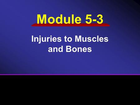 Module 5-3 Injuries to Muscles and Bones. Review of the Musculoskeletal System Injuries to Bones and Joints Injuries to the Spine Injuries to the Brain.