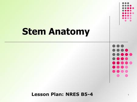 1 Stem Anatomy Lesson Plan: NRES B5-4. 2 Anticipated Problems 1. What are the functions of a stem? 2. What are some of the external structures of stems?