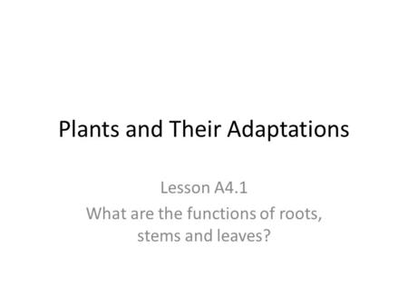 Plants and Their Adaptations Lesson A4.1 What are the functions of roots, stems and leaves?