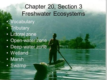 Chapter 20, Section 3 Freshwater Ecosystems Vocabulary Tributary Littoral zone Open-water zone Deep-water zone Wetland Marsh Swamp.