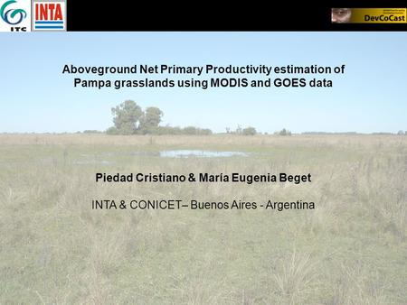 Aboveground Net Primary Productivity estimation of Pampa grasslands using MODIS and GOES data Piedad Cristiano & María Eugenia Beget INTA & CONICET– Buenos.