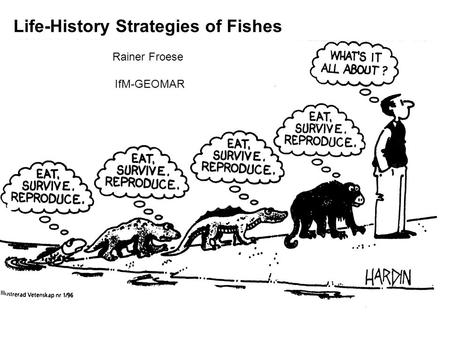 Life-History Strategies of Fishes Rainer Froese IfM-GEOMAR.