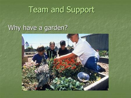 Team and Support Why have a garden? Team and Support Why have a garden?